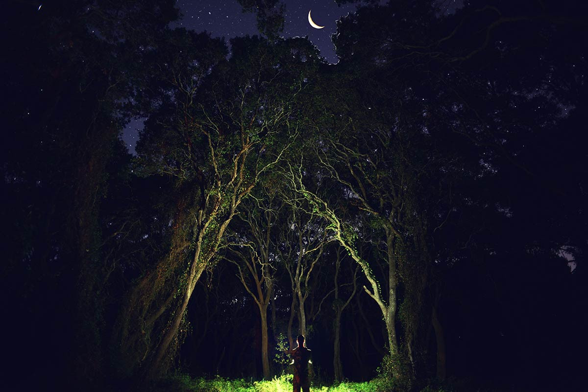 Night meeting with mother nature